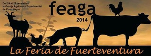 feaga-2014-fuerteventura